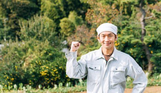 いま流行りの脱サラ農業!若者が農業に注目する理由とは