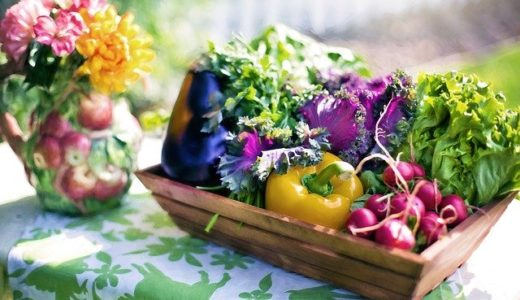 誰でもできる!ゼロから始める家庭菜園【野菜選び編】